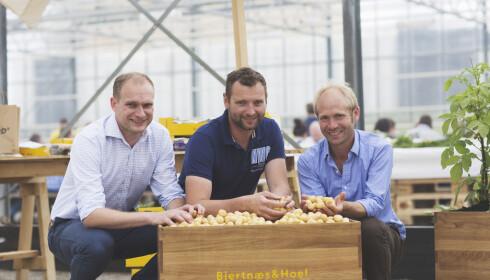 POTETKAMERATER: Henrik Raastad Hoel, Øystein Hoel og Åsmund Bjertnæs (t.h) driver Bjertnæs & Hoel, et firma med gårdsbruk ved Oslofjorden. De startet sammen i 2009. Da kunne de mye om grønnsaker og lite om poteter. Nå gjør du potetsuksess. Foto:Nadia Frantsen.