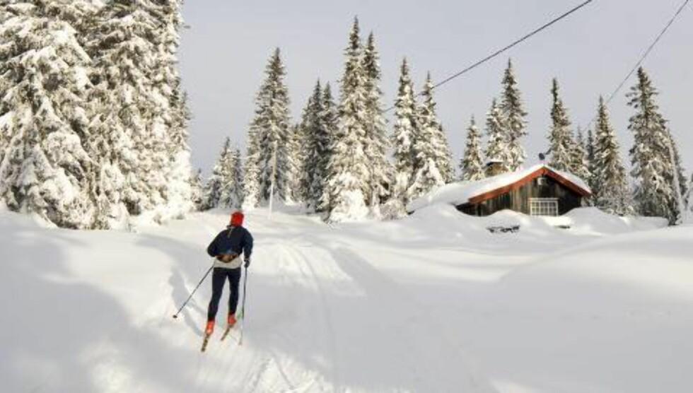 GJØR DET NÅ: Gå på ski nå før snøen forsvinner. Med kulde og solskinn er været perfekt for en skitur. ILLUSTRASJONSFOTO: Colourbox.no