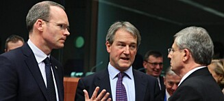 Slår alarm i EU-kjøttskandalen