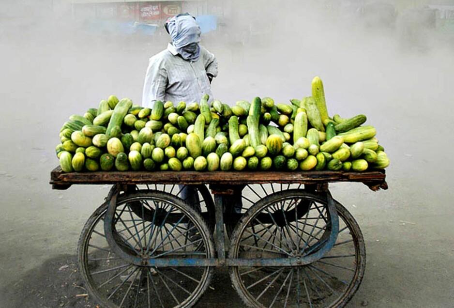 Vokser hurtig: Mye tilsier at den vegetariske trenden kommer raskere enn andre mattrender, skriver kronikkforfatteren. Foto: Alf Berg