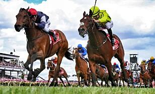 VANT: Kerrin McEvoy og hesten 'Almandin' (t.v.). Foto: George Salpigtidis /Newspix/REX/Shutterstock