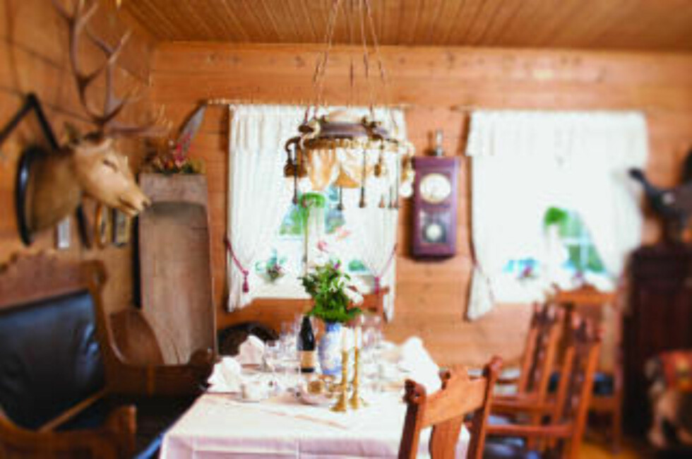 HJORT: På Gloppen Hotell kan du spise godt  under en vakker hjort.