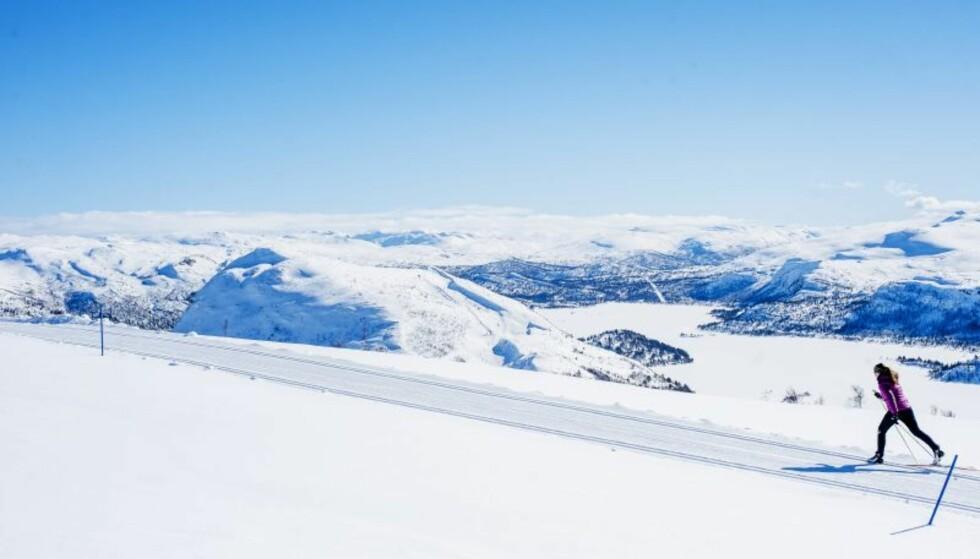 PARADIS: Hva sier du til et løypenett på 170 kilometer? FOTO: Øystein Kvanneid
