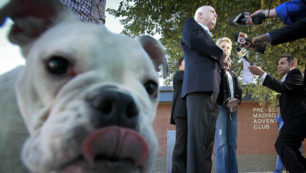 POPPIS PÅ FACEBOOK: John McCain, her avbildet bak hunden Apollo, som eies av McCains sønn Jimmy, i natt norsk tid. Foto: AP/Matt York/Scanpix