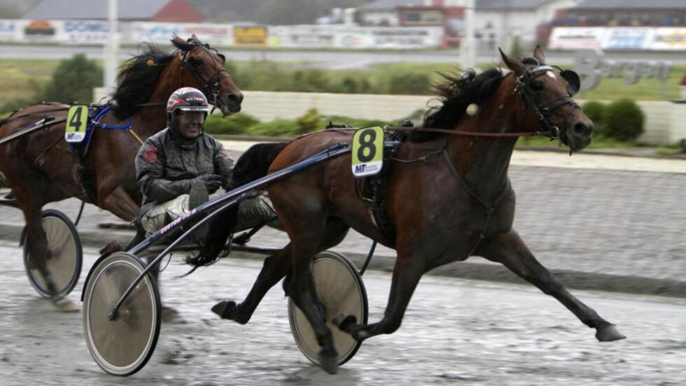 Grunn til å smile. Med en hest som Playful, er det grunn til å smile. I V65-avslutningen på Bjerke er hesten spillernes venn igjen.  Foto: HESTEGUIDEN.COM.