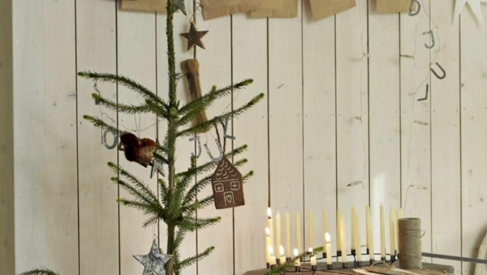 PISTRETE: Nå skal juletrærne være pistrete, og gjerne også skjeve. ILLUSTRASJONSFOTO: Sveinung Bråthen