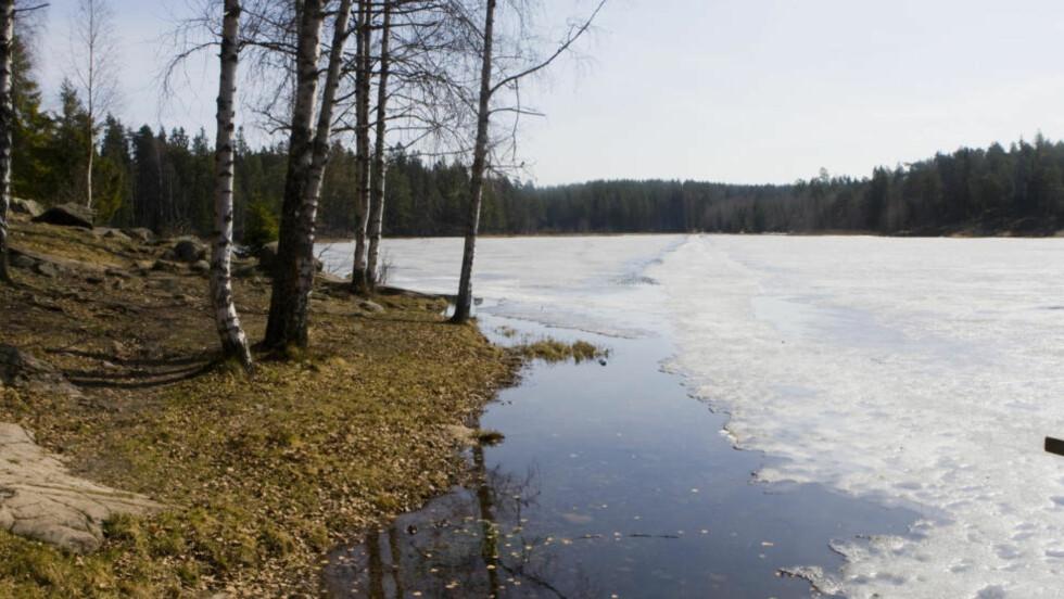 FARLIG: I november omkom to kvinner og én mann på grunn av drukning. Dette bildet stammer fra 2009, da store mannskaper reddet en mann fra drukningsdøden etter at han hadde gått gjennom isen på tjernet Svartkulp ved siden av Sognsvann i Oslo. Arkivfoto: Heiko Junge / Scanpix