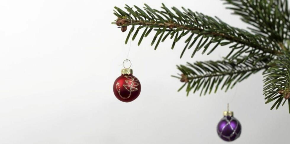 GRØNNE BARNÅLER: Gi treet rikelig med vann fra første dag og du beholder de grønne nålene lenger. Illustrasjonsfoto: www.colourbox.com