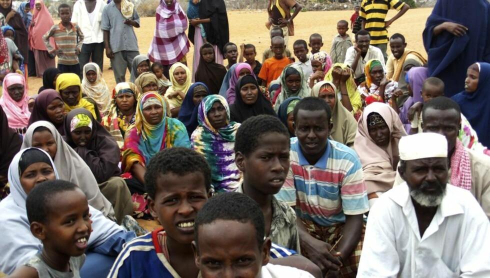 NYE FLYKTNINGER: Nyankomne somaliske flyktninger venter på å bli registrert ved mottakssenteret i den store flyktningleiren i Dadaab i Kenya. Hver måned kommer flere tusen flyktninger hit, og blant dem skjuler det seg medlemmer fra den al-Qaida-tilknyttede militsen al-Shabaab. Foto: REUTERS/SCANPIX