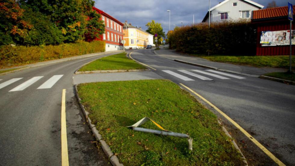 - BLE DREPT: Politiet mener Lise-May Varild ble drept av 24-åringen som stjal bilen hennes. Kvinnen la seg på panseret i et forsøk på å stanse tyven, men sjåføren kjørte videre 600 meter før hun ble slengt av og døde av skadene. Foto: Bjørn Langsem/Dagbladet