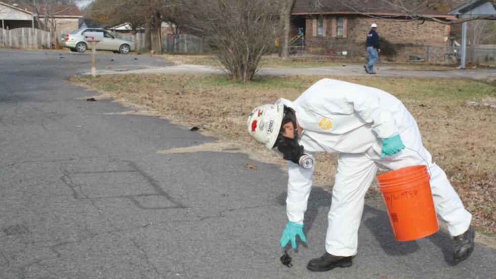 DØDE FUGLER: Over 1000 døde svarttrost har blitt funnet i byen Bebee i Arkansas. Årsaken kan være nyttårsraketter. Foto: AP Photo/The Daily Citizen, Warren Watkins/Scanpix