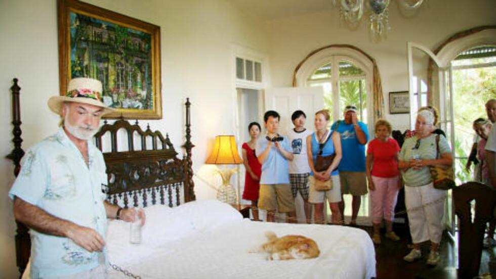 HEMINGWAYS HUS:  Hvem ligner mest på Ernest Hemingway i Key West? Her er guide på huset til forfatteren som nå er blitt et museum. Foto: Kirsten M. Buzzi/Dagbladet