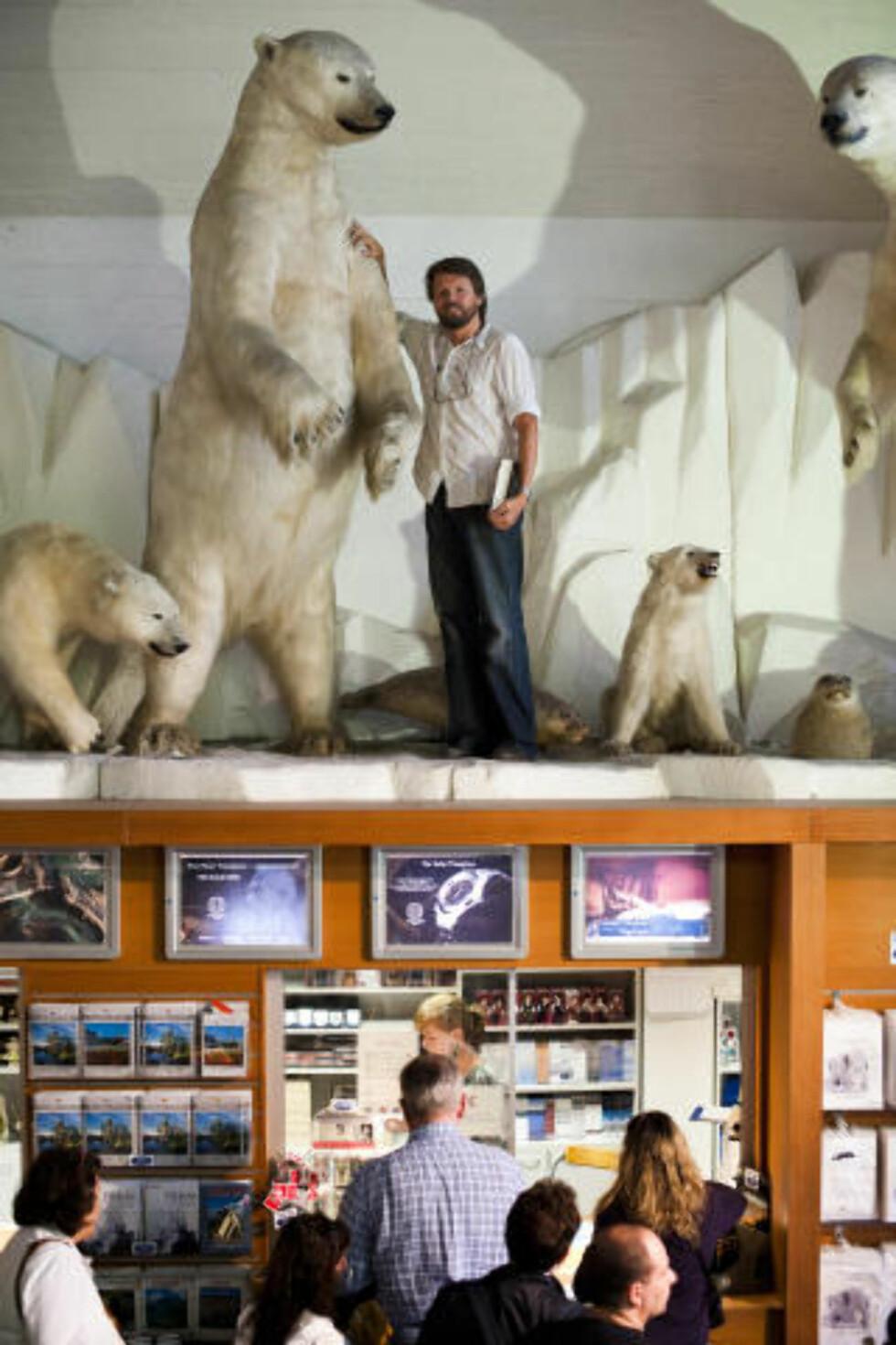 POLAREKSPEDISJON: En av hovedpersonene i «Fedrenes løgner» fosvinner på et isflak i Vestisen, hvor han blant annet blir truet av isbjørner som disse fra Fram-museet. Foto: Håkon Eikesdal