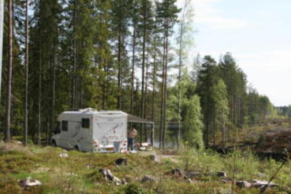 NATUR:  På campingplassen ved Lenungshammar kan man nyte naturens fred og ro. Foto: Kirsten M. Buzzi/Dagbladet