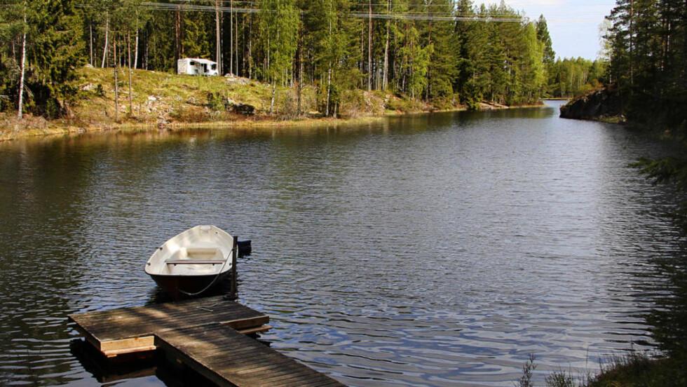 CAMPING:  Campingområdet i Glaskogens Naturreservat er lagt slik at lagt slik at det er skog mellom hver eneste tomt. Foto: KIRSTEN MARGRETHE BUZZI/Dagbladet