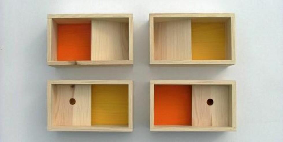 BOKSHYLLER: Den norske designeren Alex Hellum, med base i England, har laget smarte bokshyller i ubehandlet furu.  FOTO: CAMRON PR