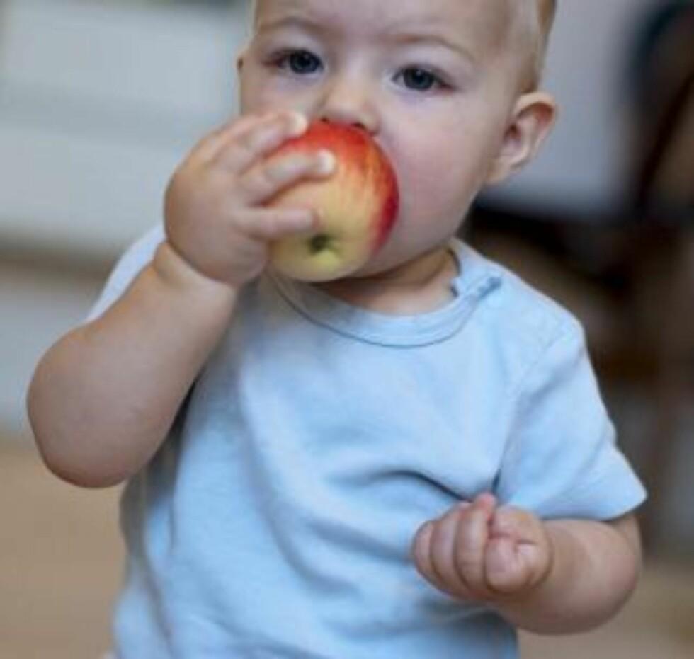 SPISE SELV: Barn liker å holde mat i hånden og prøve å spise selv. Det er bra for stimuleringen av spisemekanismen, sier Vea. Husk bare å holde godt øye med barnet så det ikke setter noe i halsen. ILLUSTRASJONSFOTO: www.colourbox.com