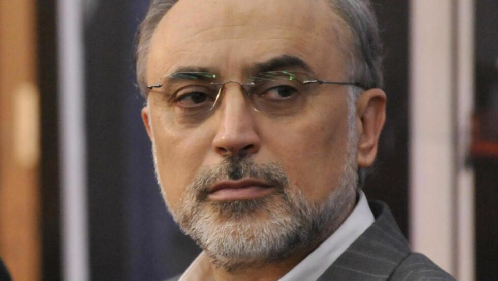 PLANER: Sjefen for Irans atomenergiorganisasjon, Ali Akbar Salehi, sier at det skal bygges ti nye urananrikingsanlegg i løpet av det neste året.  Foto: AP