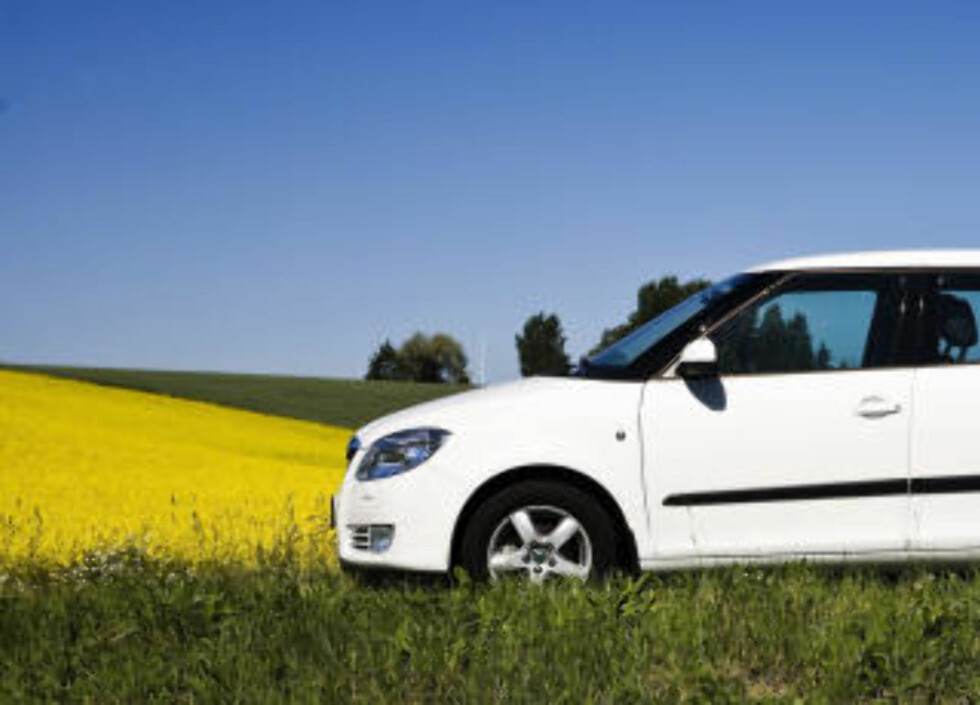 54 000: Selv med en billig bil som Skoda Fabia må du regne med en del kostnader. Som diesebil må du regne med 50 000 kroner for en bil i denne prisklassen, og som bensinbil 54 000 kroner. Foto: Rune Myhre