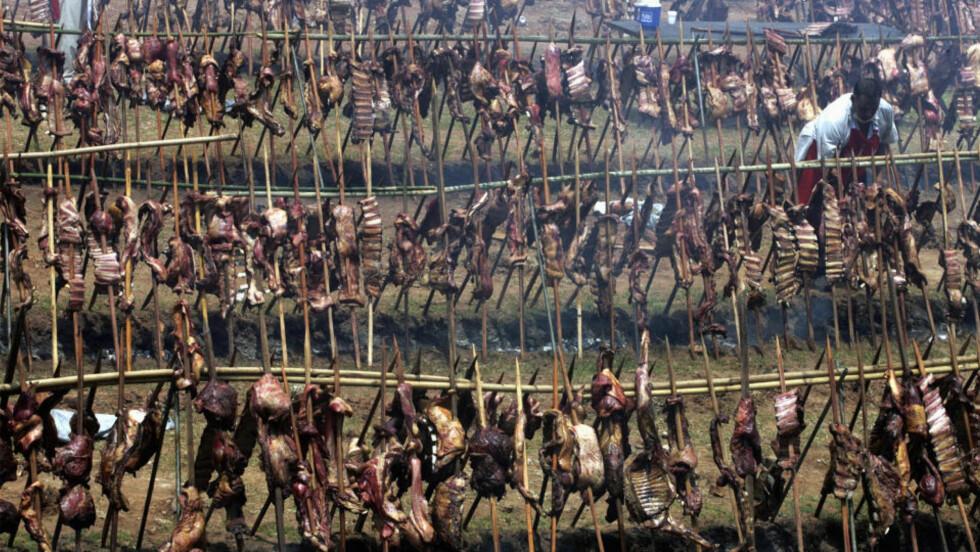 GRILLMMMMMAT: Bruk lav varme og mat med mindre fett, er noen av rådene fra Mattilsynet for å unngå skadelig stoffer i grillmaten. Bildet er fra Uruguay og et grillerekordforsøk i 2008. Foto: REUTERS/Jorge Adorno/SCANPIX