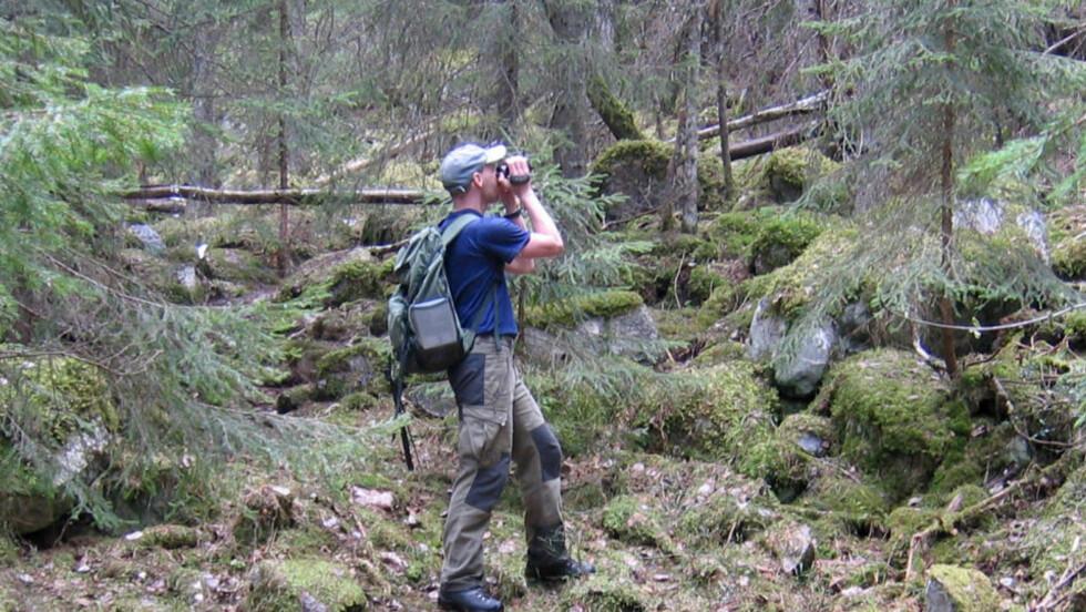 BLE ANGREPET: Biolog Tom Hellik Hofton har både blitt skutt etter og angrepet av folk som ikke liker at han ferdes i skogen. Foto: Tor Bjarne Christensen/ Natur & Miljø.