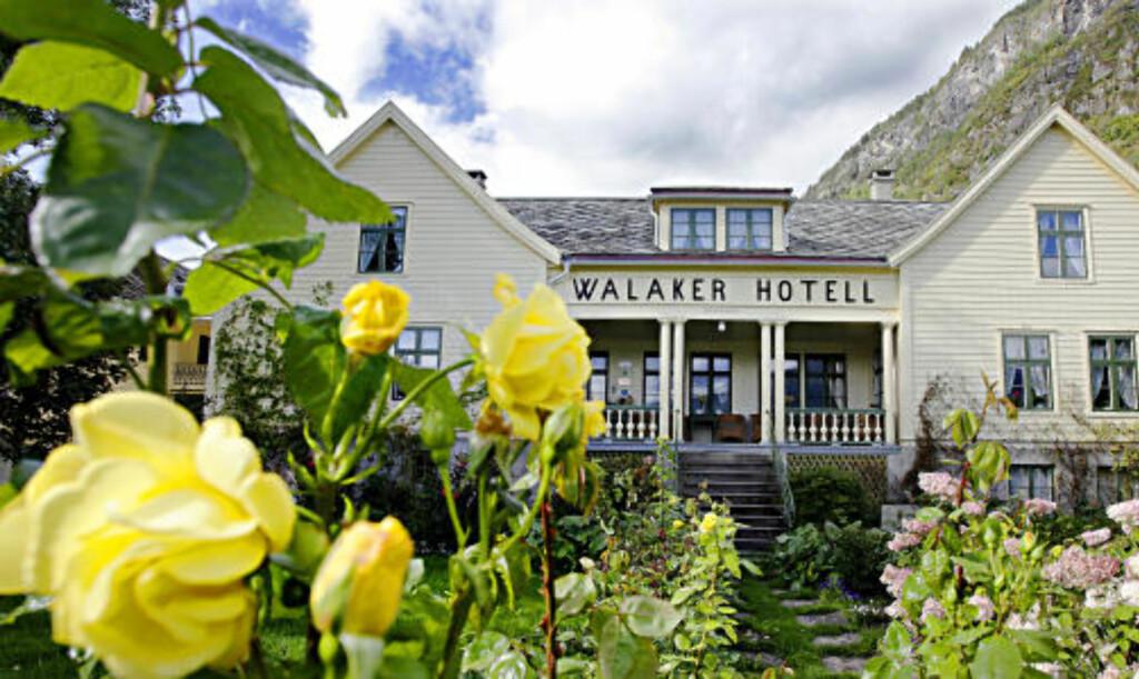 HAGEN: Rosene blomstrer til langt ut på høsten i Solvorn.