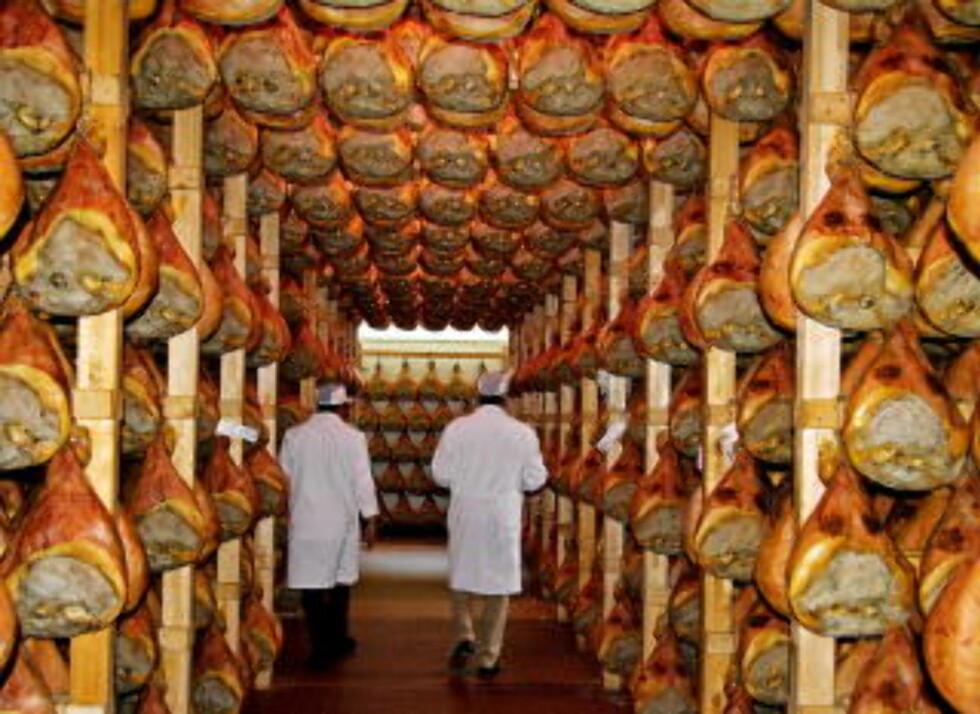 SKINKEPRODUKSJON: Mengder av skinker på Slega Prosciuttificio.