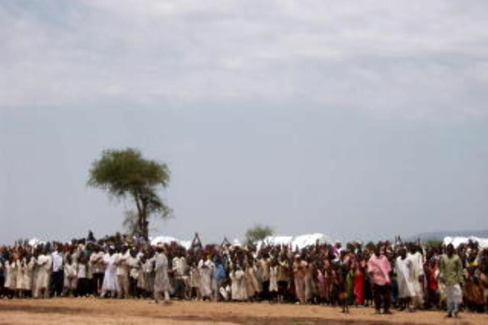 TRYGLET OM HJELP: Flyktningene i denne leiren ved byen Zalingei i  Vest-Darfur ba desperat om mat og hjelp da Dagbladet besøket dem i 2004. Over 200 000 mennesker har mistet livet i Darfur siden 2003. Foto: CARSTEN THOMASSEN/DAGBLADET