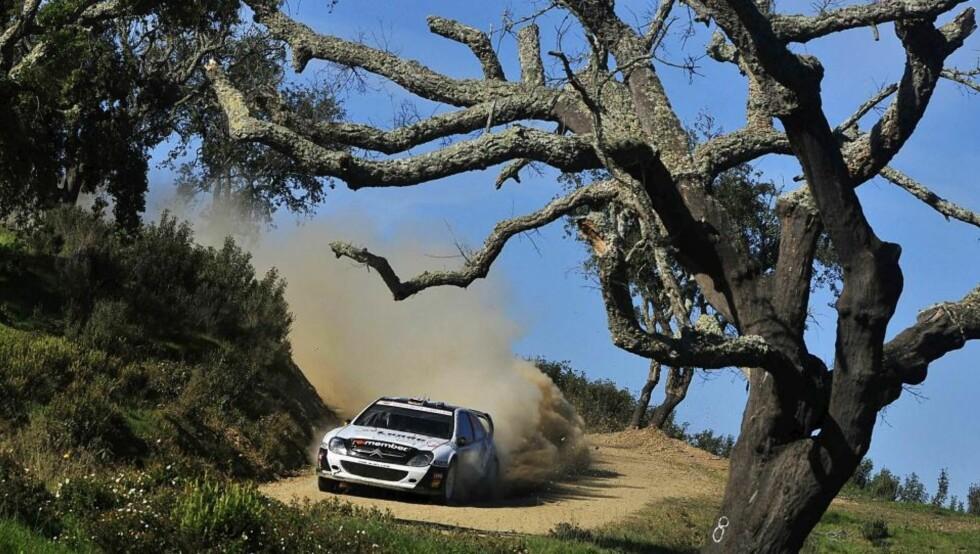 NYE STØTTESPILLERE: Petter Solberg satser på å få nye sponsorer før sesongen starter over nyttår Her under Rally Portugal. Foto: EPA