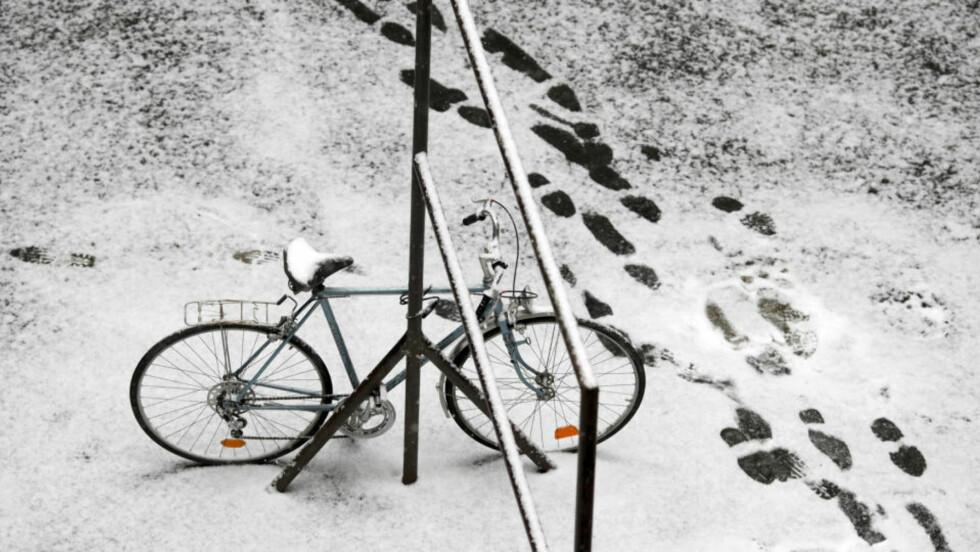 ISKALDT I WARSHAWA: Temperaturer ned mot 20 minusgrader førte til at 15 mennesker mennesker frosset i hjel i Polen natt til søndag.  Foto: REUTERS / Kacper Pempel / SCANPIX