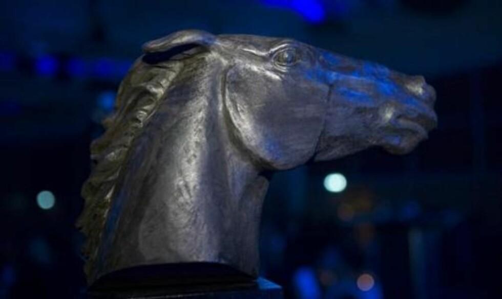 TIL UTDELING: Hestesporten vil hedre utøvere, som vil motta en pris under arrangementet Hestegalla 2010 i januar. Prisen er en miniutgave av denne skupturen som står ved Norsk Hestesenter på Starum og som er signert kunstneren Angelina Engelsen.Foto: Hestegalla.no