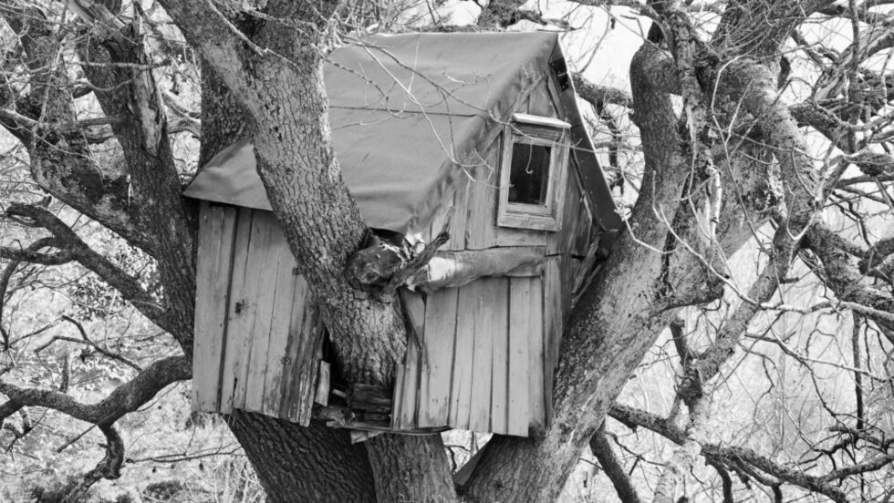 HJEMMESNEKRA: Huset i skogen går igjen i bildene til Jens Hauge, som flankeres av Frode Gryttens treffende tekster i boka «Det norske huset». Alle foto: FRA BOKA