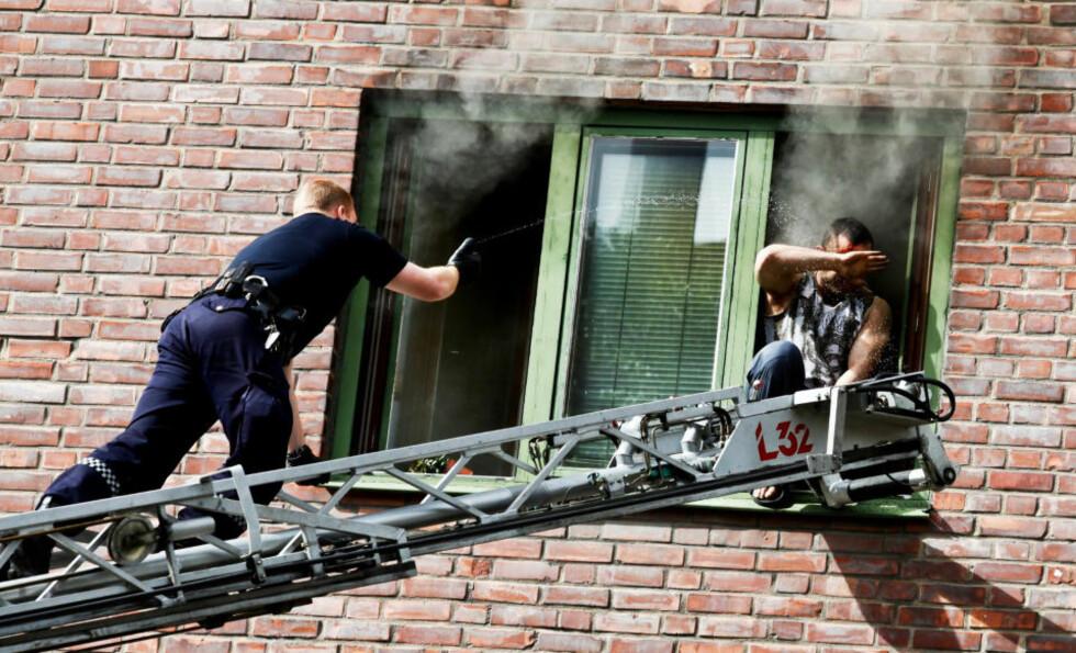 DRASTISKE VIRKEMIDLER: Beboeren måtte til slutt uskadeliggjøres med pepperspray. Foto: MAGNUS KNUTSEN BJERKE