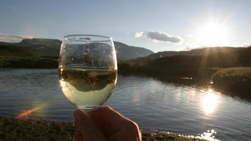 - EN FULLVERDIG KONKURRENT: Dagbladets vinekspert har sansen for vin fra Coonawarra. Illustrasjonsfoto:GEIR BØLSTAD/ Dagbladet