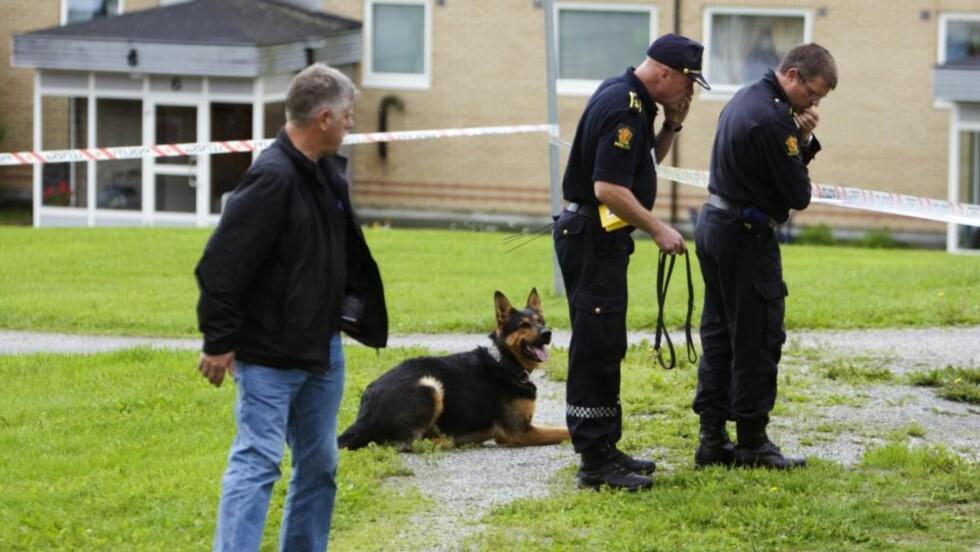 OMFATTENDE ETTERFORSKNING: Politi med hunder gjorde i ettermiddag søk ved funnstedet, mens tekniske etterforskere fra Kripos sikret mulige spor. Foto: Cornelius Poppe / SCANPIX