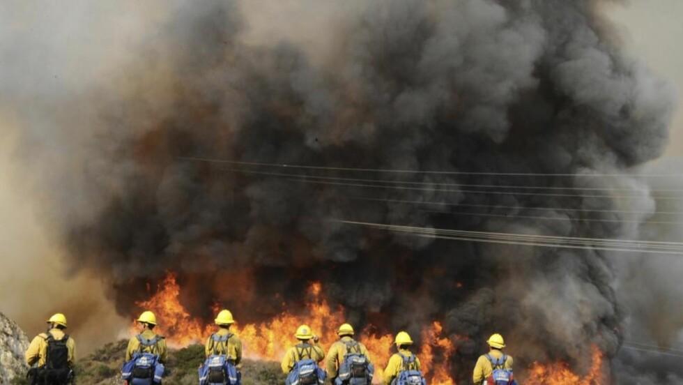 KJEMPER MOT FLAMMENE: Brannmenn fra ANF kjemper mot flammehavet nord for Los Angeles i California. Foto: REUTERS/Gene Blevins