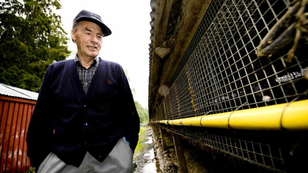 JUKS: Pelsfarmeier Steinar Linn mener dyrevernsaktivistene har jukset med bildene av syke dyr fra hans gård. Foto: Erik Lindholm Hansen/GD