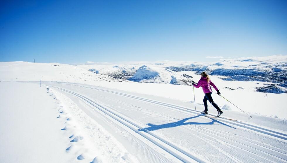 SNØ, SNØ, SNØ: Hovden byr på fantastiske omgivelser enten du liker alpint, topptur, brett eller langrenn. FOTO: Øystein Kvanneid