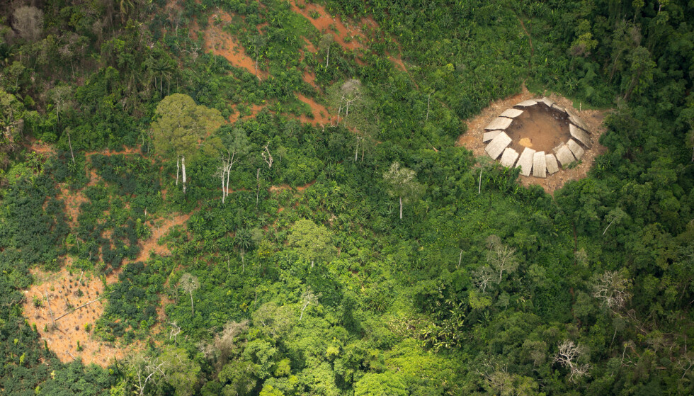 REGNSKOGEN: Moxihatetema-indianerne bor i regnskogen, nær grensa til Venezuela, i delstatene Amazonas og Roraima. Foto: Guilherme Gnipper Trevisan / Hutukara