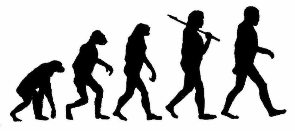 EVOLUSJONEN: Menneskets utvikling gjennom flere stadier, og særlig teoriene om missing link, har vært gjenstand for mang en Illustrert Vitenskap-forside. Mange briter har nok gått glipp av de sakene.