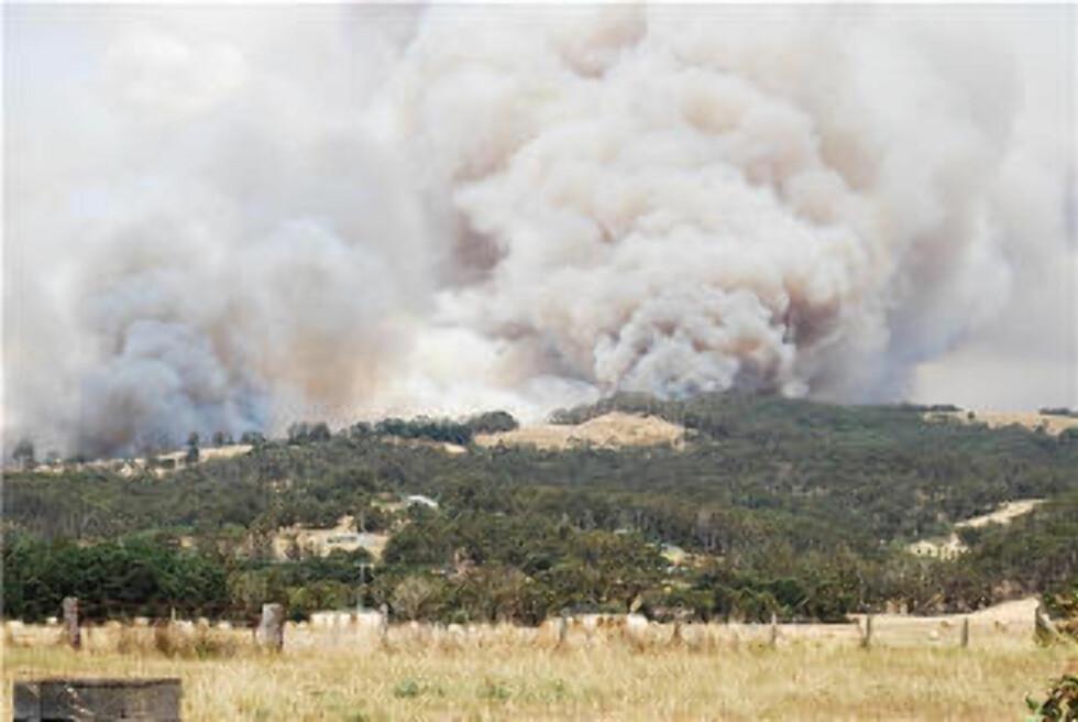 MANGE DØDE: Byen Churchill er et av stedene som er rammet av skogbrann, som har tatt livet av 128 mennesker i Australia så langt. Politiet tror pyromane kan stå bak flere av brannene. Bildet viser utsikten fra et hjem i Churchill lørdag. Foto: ELLEN T. DOHERTY