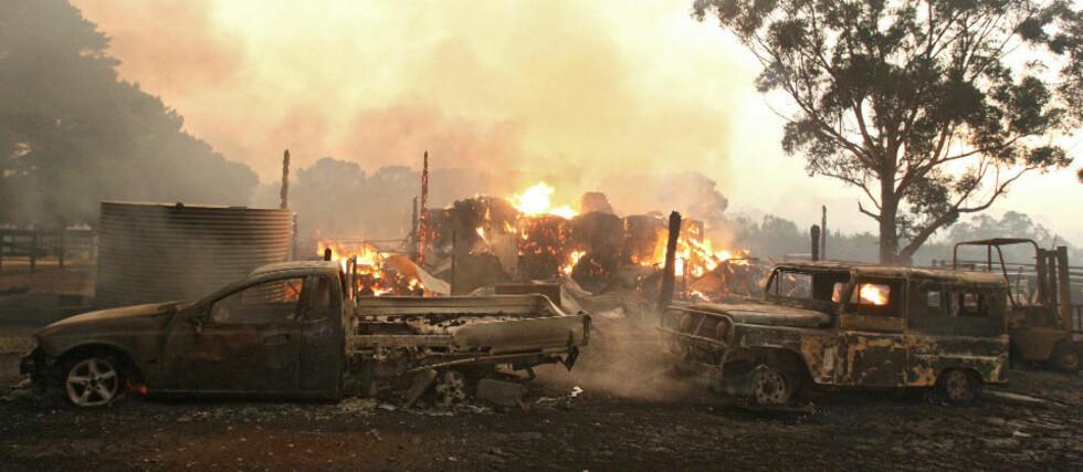 <strong>SLITER MED Å FÅ KONTROLL:</strong> Brannfolkene slåss for å slukke de mange skogbrannene på sørkysten i Australia. Foto: EPA/SCANPIX
