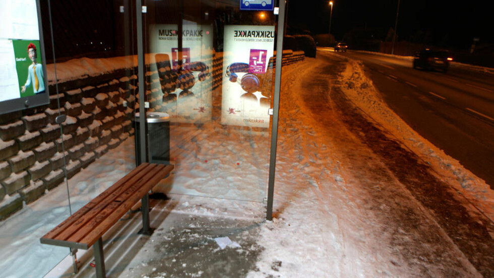 <strong> SITTER PÅ REGNSKOGEN:</strong> Benkene i 700 busskur i Rogaland er laget av brasiliansk ipé. Foto: Erling Hægeland.