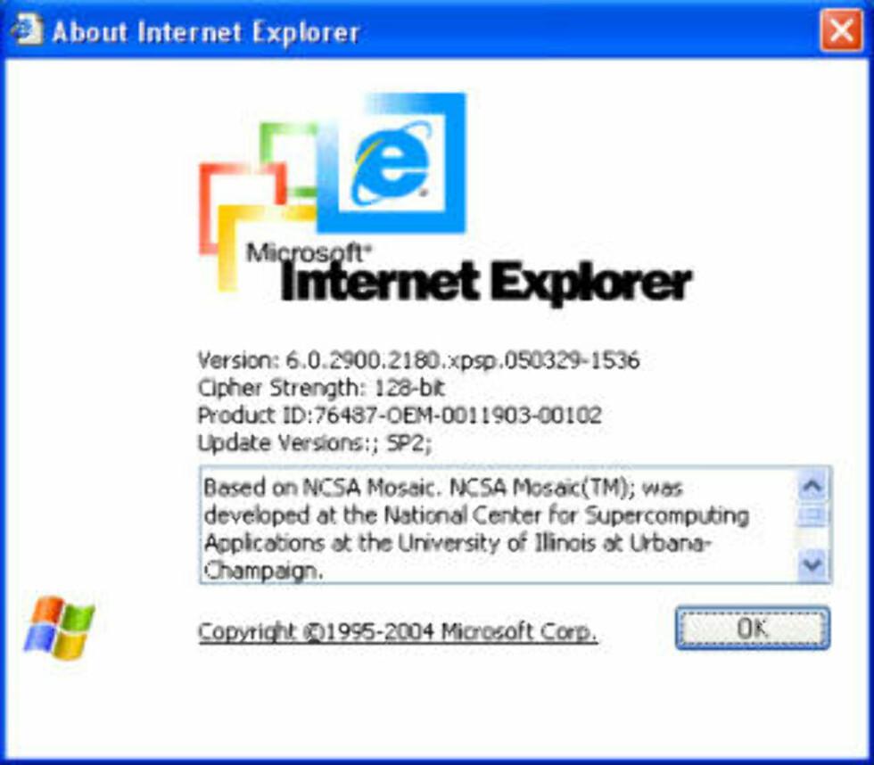 <strong>OLD SCHOOL:</strong> Internet Explorer 6 har eksistert siden 2001. Nå er det på tide å pensjonere den, mener en rekke ledende norske nettsteder.