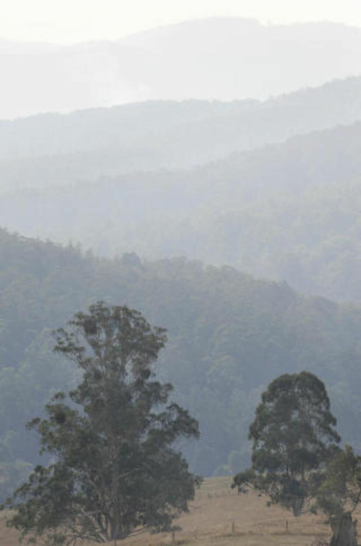 <strong>RØYK:</strong> Røyken siver opp fra Neerim, sør for  Bunyip Ridge i Bunyip State Forest hvor det fremdeles brenner innenfor et avgrenset området. Foto: AFP/Paul CROCK/Scanpix