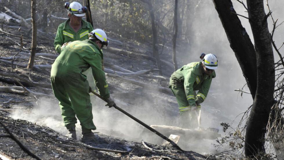 <strong>PÅGÅR FREMDELES:</strong> Her drives etterslukning i Lysterfield State Park. Nå frykter myndighetene at skogbrannene som har herjet Australia vil blusse opp i full styrke på grunn av sterk vind og varme. Foto: AFP/Paul CROCK/SCANPIX