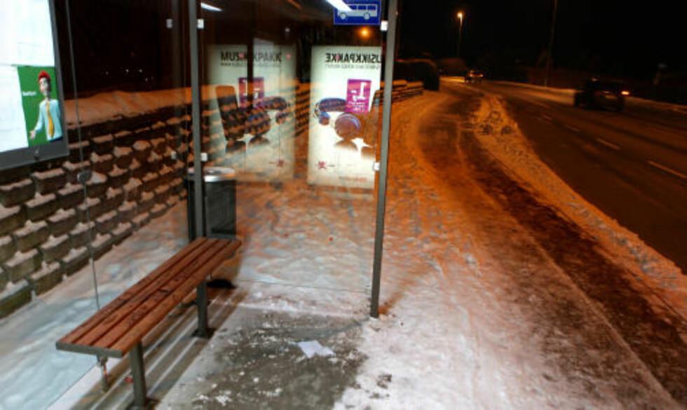 REGNSKOGTØMMER: 600 benker i busskur i Rogaland fylke er av regnskogtømmeret ipé. Foto: Erling Hægeland.
