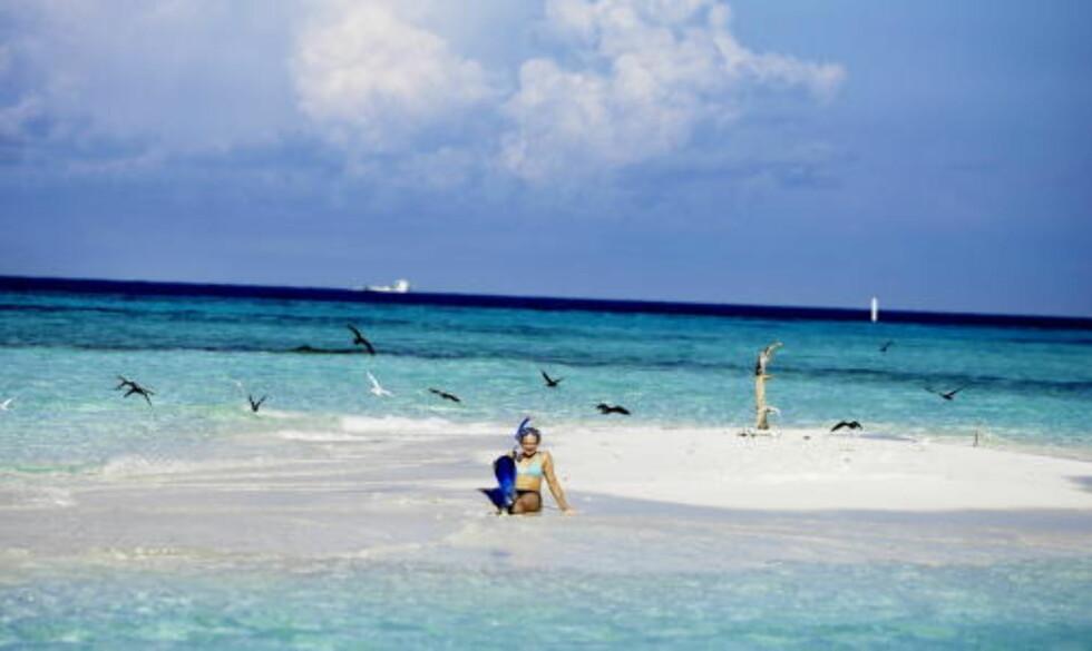 MALDIVENE: Kommer som reisemål også til neste vinter. Foto: THOMAS RASMUS SKAUG