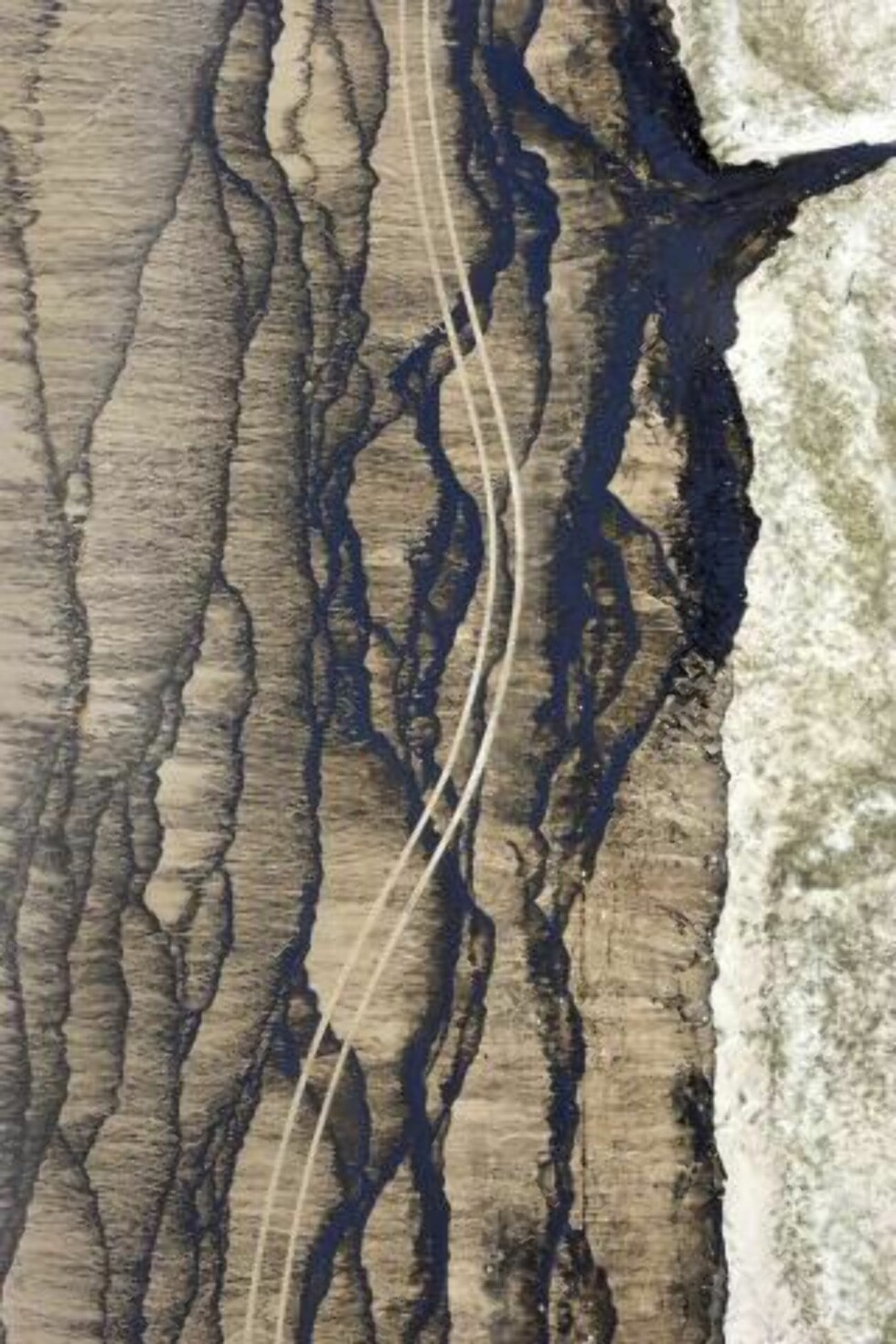 ERKLÆRT KATASTROFEOMRÅDE: Oljesølet har satt sine spor på denne engang så urørte stranden på Moreton Island. Foto: Scanpix