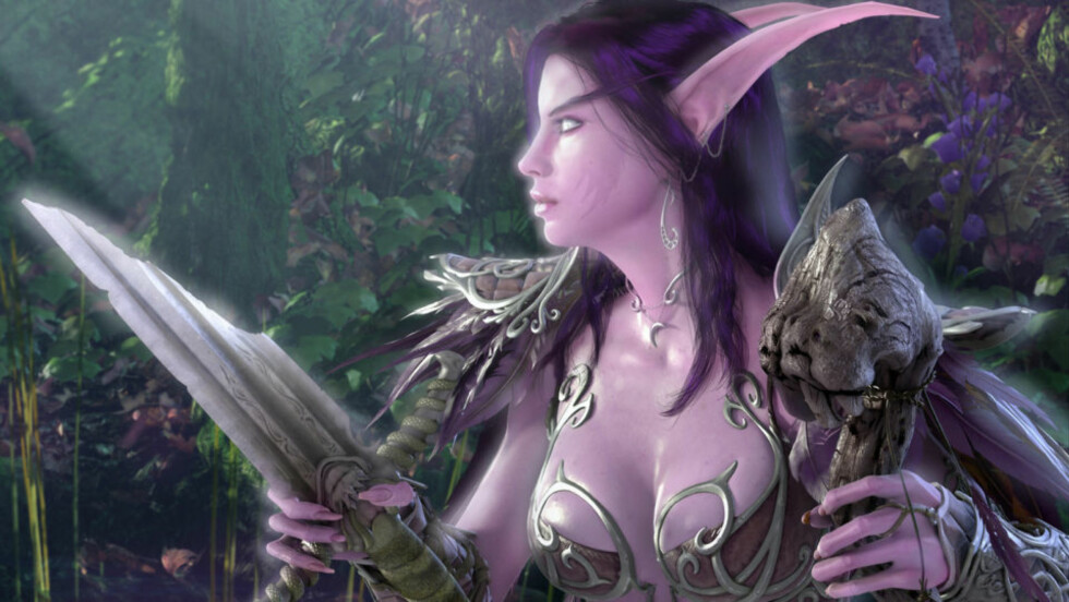 EN DU KJENNER? De aller fleste opererer med såkalte «nicks» når de beveger seg online, for eksempel i onlinespill som «World of Warcraft». Dette kan gjøre det vanskelig å spore opp onlinevennene til folk som tar med seg passord og lignende i graven. Foto: BLIZZARD